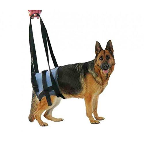 Fascia supporto veterinario Handy Canis