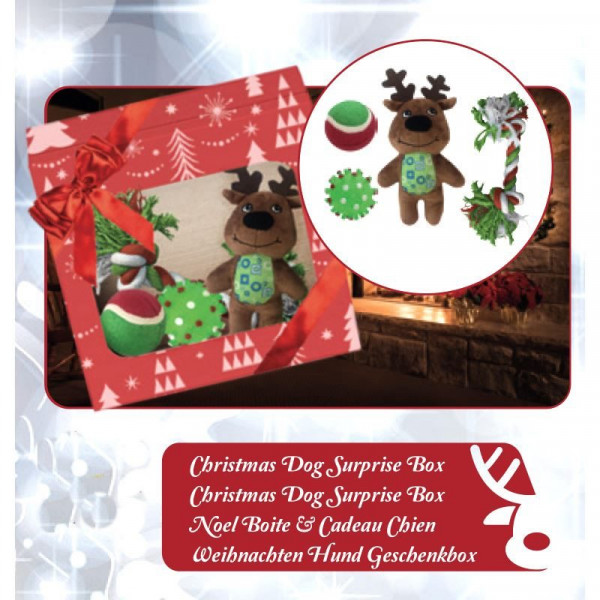 Christmas Dog Surprise Box - Confezione assortita giochi regalo di Natale per cani
