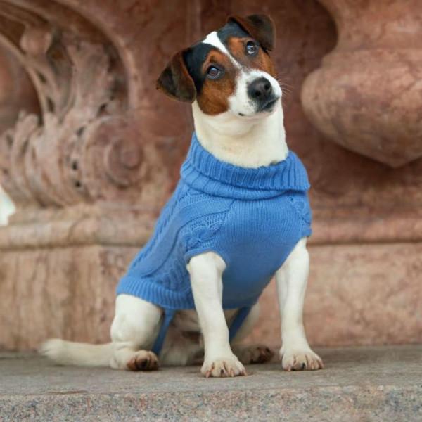 Maglione per cani Bordeaux di Camon