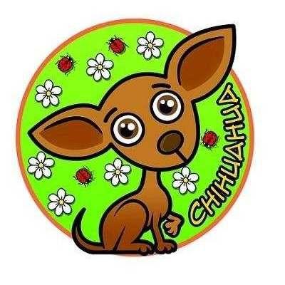 Adesivo Linea Chihuahua Nasonero Mod6