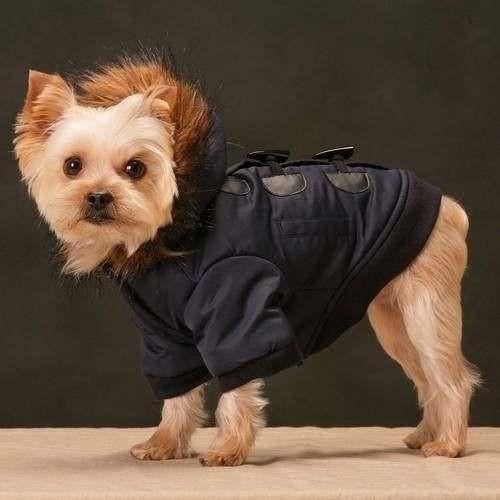 Cappottino Dinah Blu - Taglia L abbigliamento per cani