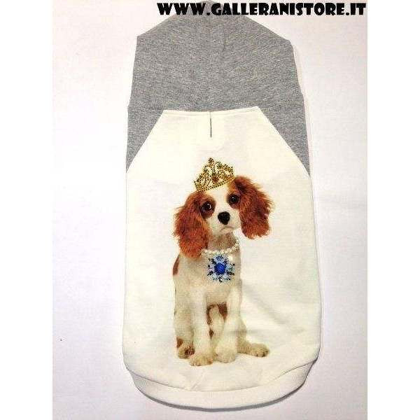 Felpa Cavalier King M - Dog & Dolls