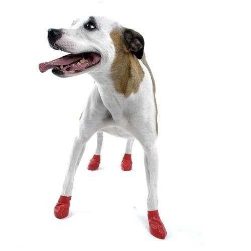 Scarpine PAWZ in gomma naturale per cani - Misura SMALL ROSSO