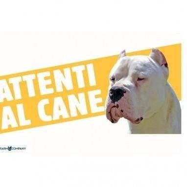 Cartello Attenti al cane Dogo Argentino - Farm Company