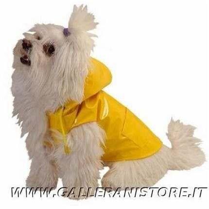 Impermeabile per cani RAINDROP Giallo Caniamici