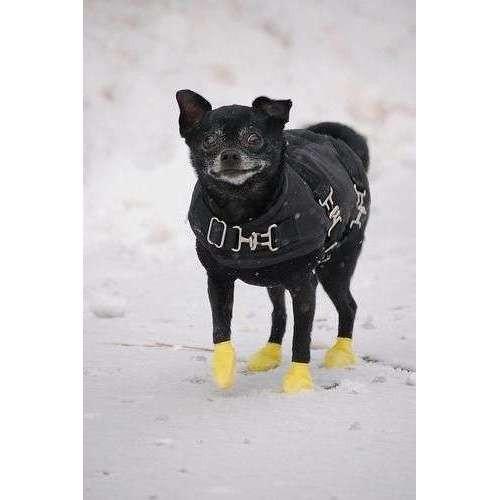 Scarpine PAWZ in gomma naturale per cani - Misura XXS GIALLO