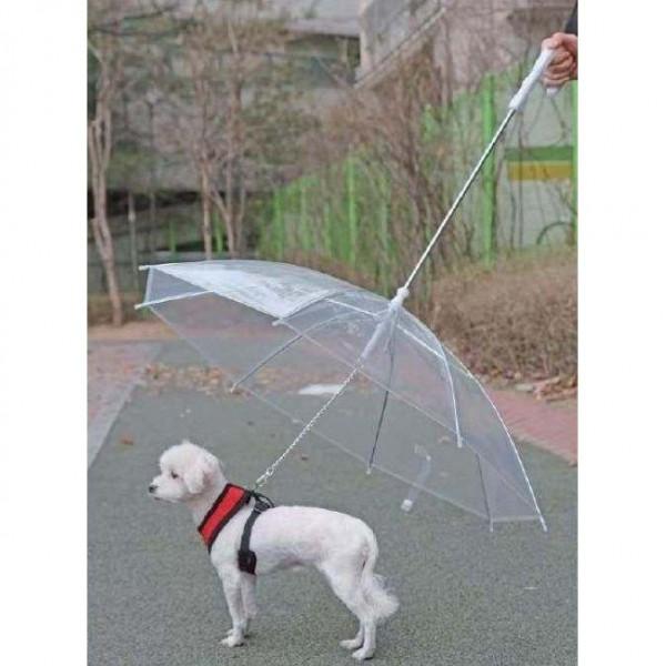 Ombrello guinzaglio da passeggio per cani - PUPPIA