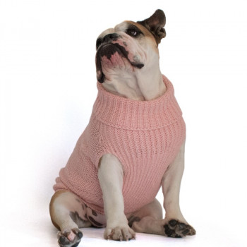 Maglione per Bulldog Inglese modello Oliver Rosa