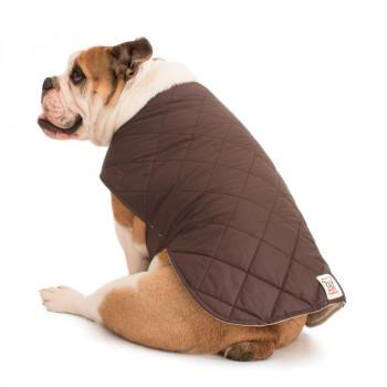 Mantellina Cooler per Bulldog Inglese colore Marrone