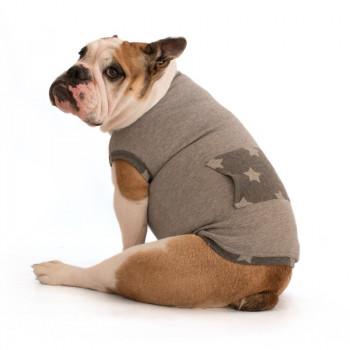 "Felpa per Bulldog Inglese ""Rocky"""