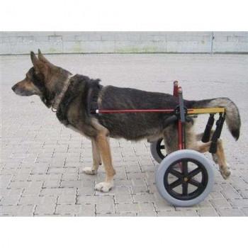 Carrellino Ortopedico Doggy per cani disabili o in riabilitazione