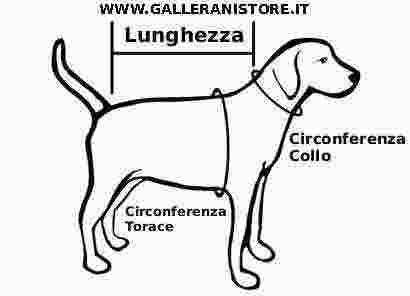 misurare_cane