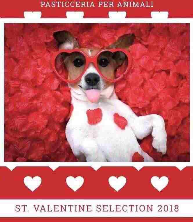 Pasticceria per cani San Valentino